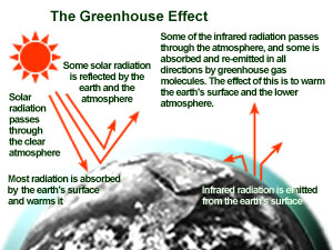 Carbon dioxide acts like the glass of a greenhouse, trapping the sun's heat to create global warming and climate change.
